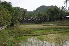Village de Toraja avec les maisons caractéristiques images stock