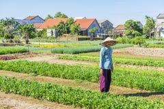 Village de Tra Que, province de Quang Nam, Vietnam Photographie stock libre de droits