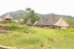 Village de Wologai Traditonal, Ende Image stock