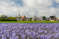 Village Den Hoorn at Dutch Texel Stock Photos