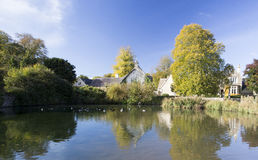 Village Duck Pond Stock Images