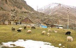 Village en montagne de Caucase Photo stock