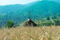 village environment Stock Photos