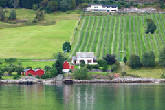 Europe village in fjord Stock Images