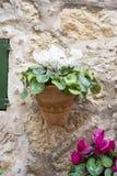 Village, flowerpots street in the tourist island of Mallorca, Va. Ldemosa city in Spain Stock Photos