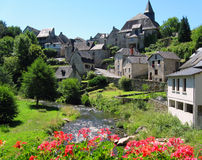 Village with flowers stock image