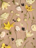 Floral Background. Village flowers on pastel background. Floral texture flat lay Royalty Free Stock Image
