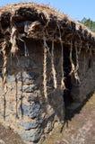 Village folklorique de Seongeup, île de Jeju, Corée Images libres de droits