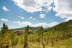 Village français de vin d'Alsace photo stock