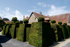 Village in france, with enormous hedge. Groomed gardens in french village Royalty Free Stock Image
