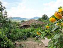 Village garden with an old house Royalty Free Stock Images