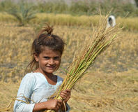 Village Girl in Fields! Royalty Free Stock Images