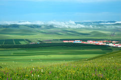 Village & grassland. Green spring field with a morning fog Royalty Free Stock Photography