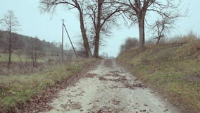 Village gravel road and trees stock video footage