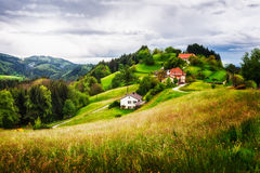 Village on a green hill Stock Photography