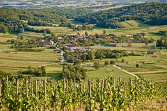 Village in green natural scenery. Under vineyard hill, Kalnik, Croatia Royalty Free Stock Image