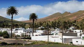 Village of Haria, Lanzarote. Village of Haria with lots of palm trees, Lanzarote stock photos
