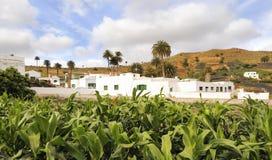 Village of Haria, Lanzarote, Canary Islands, Spain. Village of Haria in the North of Lanzarote island, Canary Islands, Spain Royalty Free Stock Image