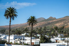 Village of Haria in Lanzarote Stock Photography