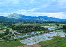 Village hill. Rice field in rural village hill Thailand Stock Image