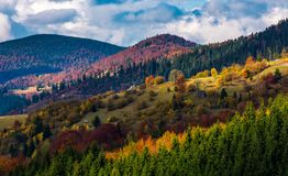 Village on a hillside with forest in autumn Royalty Free Stock Images