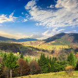 Village on hillside meadow with forest in mountain Royalty Free Stock Images