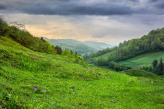 Village on hillside meadow with forest in mountain Royalty Free Stock Photos