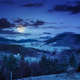 Village on hillside meadow with forest in mountain at night Royalty Free Stock Photos