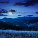 Village on hillside meadow with forest in mountain at night Royalty Free Stock Images
