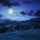 Village on hillside meadow with forest in mountain at night Stock Photos
