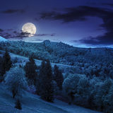 Village on hillside meadow with forest in mountain at night Royalty Free Stock Photography