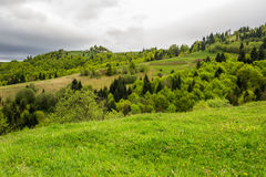 Village on hillside meadow with forest in mountain Royalty Free Stock Photography