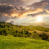 Village on hillside meadow with forest in mountain at sunset Stock Image