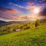 Village on hillside meadow with forest in mountain at sunset Stock Photos