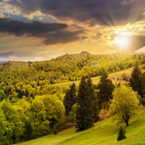 Village on hillside meadow with forest in mountain at sunset Royalty Free Stock Photography
