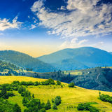 Village on hillside meadow near forest in mountain Royalty Free Stock Photo