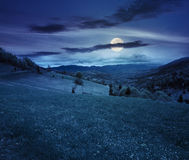 Village on hillside meadow at night Stock Images