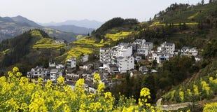 Village, on a hillside yellow rape and winding mountain path Royalty Free Stock Photo