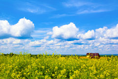 Village house. Village house in the field in summer hot weather with the clouds stock photography