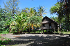 Village house. In jungles, Papua New Guinea Royalty Free Stock Images