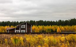 Village house in the field. In autumn with gray sky stock photos