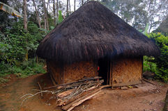 Village house with firewood at rural area. Papua New Guinea Royalty Free Stock Images