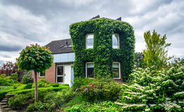 Village house in Holland. Royalty Free Stock Images