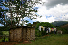 Village house and life. Simple village house in the country outskirts of Fiji showing the simple life the people there live Stock Photos