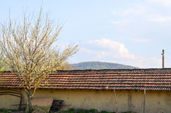 Village house   in the spring Stock Photography