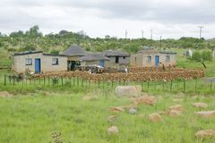 Village houses in countryside of Zululand, South Africa Royalty Free Stock Images