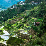 Village houses near rice terraces fields. Amazing abstract texture with sky colorful reflection in water. Ifugao province. Banaue, Philippines UNESCO heritage royalty free stock photo