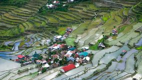 Village houses near rice terraces fields. Amazing abstract texture with sky colorful reflection in water. Ifugao province. Banaue, Philippines UNESCO heritage royalty free stock images