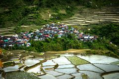 Village houses near rice terraces fields. Amazing abstract texture with sky colorful reflection in water. Ifugao province. Banaue, Philippines UNESCO heritage stock images