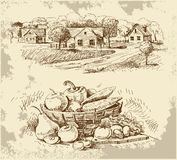 Village Houses Sketch With Food Stock Photo